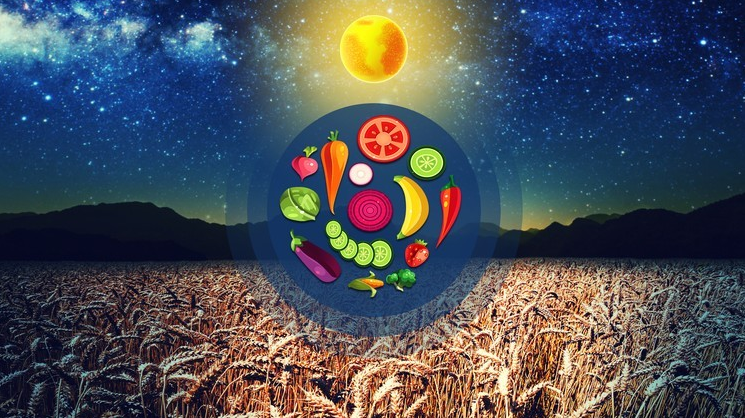 The Essential BioDynamics Re-Balance Your Life & Your Farm