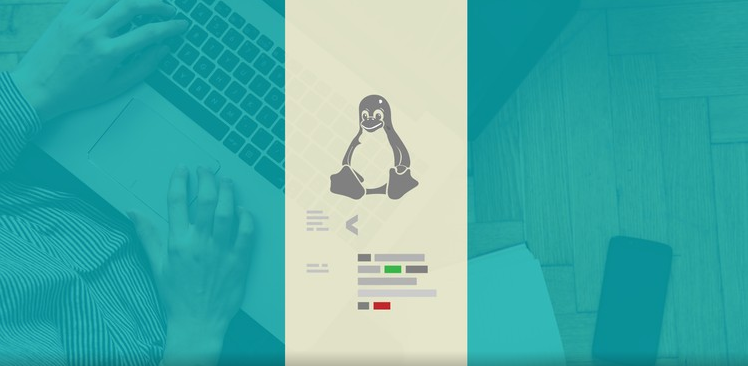 Complete Linux Shell Training for Beginners